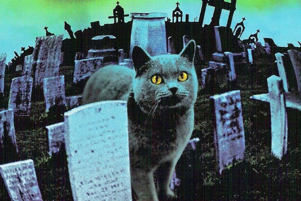 кладбище домашних животных черч